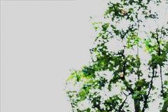 Samenvatting vaag beeld van groene gebladerteachtergrond stock illustratie