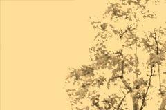 Samenvatting vaag beeld van groene gebladerteachtergrond met oud vector illustratie