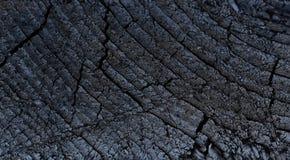 Samenvatting van achtergrond van de schors de houten textuur stock foto