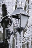 Samenvatting van Lamppost met aanraking van vorst op een bevriezende de winterdag stock afbeeldingen