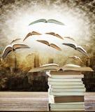 Samenvatting van open boek op stapel en vliegend boek aan het licht over Stock Fotografie