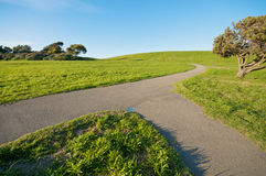 Samenvoegende Weg op groen landschap en blauwe hemel stock foto's