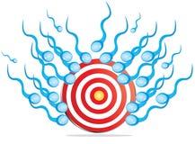 Samenzellen, die Ziel schlagen Stockbilder