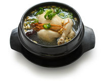 Samgyetang Stock Photos