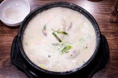 Samgyetang - Koreaanse de Ginsengsoep van de Schotelkip Stock Foto