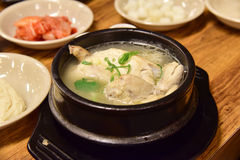 Samgyetang lub Tradycyjna Koreańska Ginseng kurczaka polewka, Obraz Royalty Free