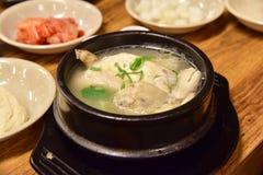 Samgyetang, o minestra di pollo coreana tradizionale del ginseng Immagine Stock Libera da Diritti