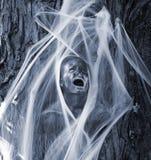 samhain στοκ εικόνες