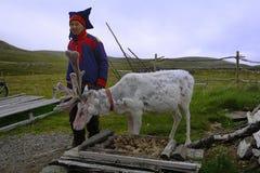 Sami farmer and a Reindeer Stock Photo