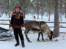 Sami man with reindeer in snow in Lapland, Finland. LAPLAND, FINLAND – FEBRUARY 2, 2017: A Sami man in traditional clothing stands beside a reindeer and sleigh Royalty Free Stock Images