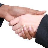 samica uścisk dłoni Fotografia Stock
