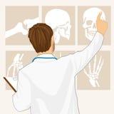 Samiec doktorski wskazywać na tomografii royalty ilustracja