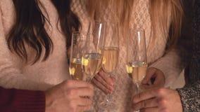 Samiec i kobieta wręczamy chwyta wineglass otuchy zbiory wideo
