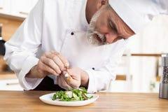 Samiec kucbarski szef kuchni dekoruje garnirowanie przygotowywa? sa?atkowego naczynie na talerzu w restauracyjnej handlowej kuchn fotografia royalty free