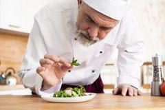 Samiec kucbarski szef kuchni dekoruje garnirowanie przygotowywa? sa?atkowego naczynie na talerzu w restauracyjnej handlowej kuchn obraz royalty free