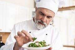 Samiec kucbarski szef kuchni dekoruje garnirowanie przygotowywa? sa?atkowego naczynie na talerzu w restauracyjnej handlowej kuchn obraz stock