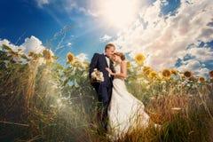 Samiec outdoors i kobieta w słonecznikach Zdjęcia Royalty Free