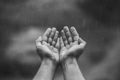 Samiec ręki składali w jego rękach i ciągnęli do nieba od whi Zdjęcie Royalty Free