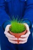 Samiec wręcza mienie puszkującej trawy Obraz Royalty Free