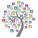 Samkvämet förtjänar treen royaltyfri illustrationer