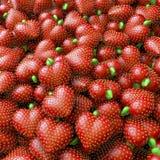 Samla i en klunga, överhopa, pölen av jordgubbehjärtor Arkivbilder