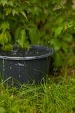 Samla regnvatten in i en flödande över hink i gräset Arkivbild
