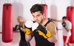 Samlad idrottsman i stansmaskinerna för boxning för boxningkorridor de praktiserande Royaltyfri Foto