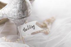 Samlade brud- skor med halsbandet Royaltyfri Foto