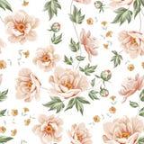 Samless σχέδιο λουλουδιών Στοκ εικόνα με δικαίωμα ελεύθερης χρήσης