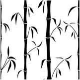 Samless bamboo Stock Image