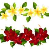 Samless border made of tropical flowers Stock Photo