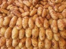 Samless patato Royalty Free Stock Photo
