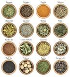 Samling av örter och kryddor Arkivbilder