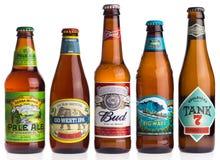 Samling av amerikanska öl på vit Royaltyfri Fotografi