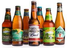 Samling av amerikanska öl på vit Royaltyfri Bild