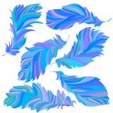 Samling av blåa fjädrar Arkivfoto