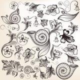 Samling av calligraphic beståndsdelar och krusidullar för vektor stock illustrationer