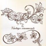 Samling av calligraphic krusidullar och virvlar för vektor royaltyfri illustrationer