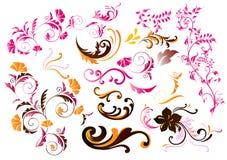 Samling av calligraphic vektorelement för färg Stock Illustrationer