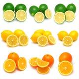 Samling av citronen, limefrukt och apelsinen Fotografering för Bildbyråer