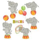 Samling av den gulliga cirkuselefanten Royaltyfria Bilder
