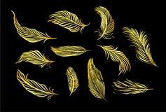 Samling av den hand drog fjädern Uppsättning av dekorativa djurfågelfjädrar Hand dragen vektorkonst Illustration för färgpulver f stock illustrationer