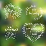 Samling av ecoen och bio etiketter, emblem Royaltyfria Foton