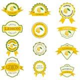 Samling av färgrika citronetiketter Royaltyfri Fotografi