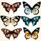 Samling av färgrika fjärilar för design Arkivbilder