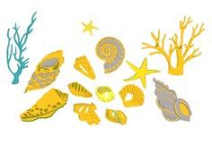 Samling av färgrika havsskal, stjärnor Royaltyfria Foton