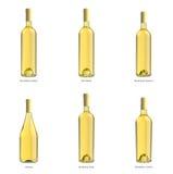 Samling av flaskor av vit wine Fotografering för Bildbyråer