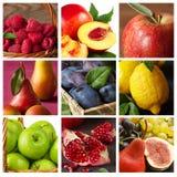 Samling av frukt. Royaltyfria Foton