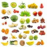 Samling av frukt arkivbild