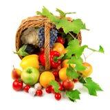 Samling av frukter och grönsaker Arkivbilder